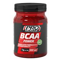 PROMUSCLE BCAA POWER 500CPR